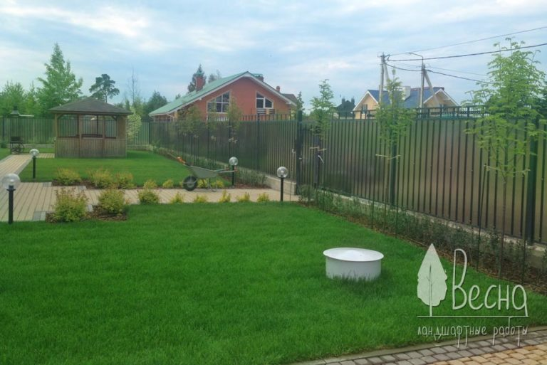 Укладка рулонного газона в Сосновом Бору. Посадка растений